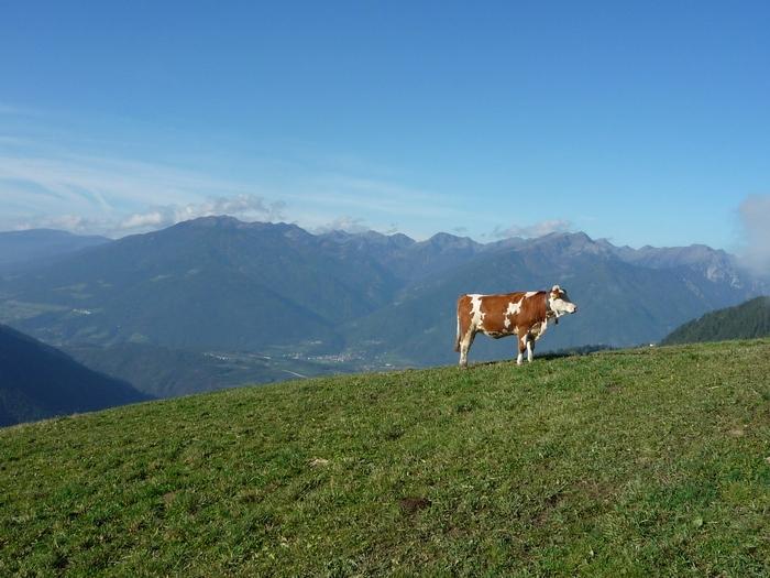 Clubfahrt nach Tirol, 2010